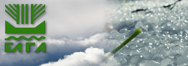 Δήμος Θηβαίων: Ανακοίνωση προς παραγωγούς που υπέστησαν ζημιές σε φυτικό κεφάλαιο λόγω χαλαζόπτωσης στην περιοχή της ΔΕ Πλαταιών